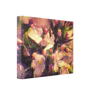 Painterly Image of Crabapple Blossom Canvas Print