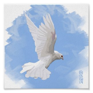 Painting Of A White Dove Flying Poster