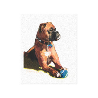 """Painting of """"Brodie the Boxer"""" Canvas Print"""