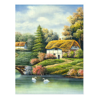 Painting Of Swans On A Lake Near A Home Postcard