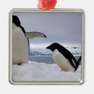 Pair Adelie penguins Antarctica Christmas Ornament