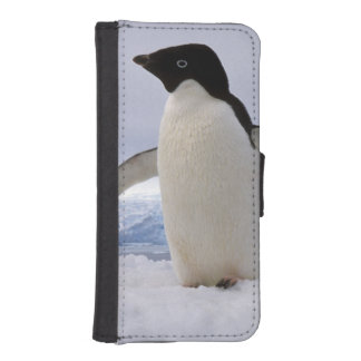 Pair Adelie penguins Antarctica iPhone SE/5/5s Wallet Case