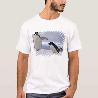 Pair Adelie penguins Antarctica T-Shirt