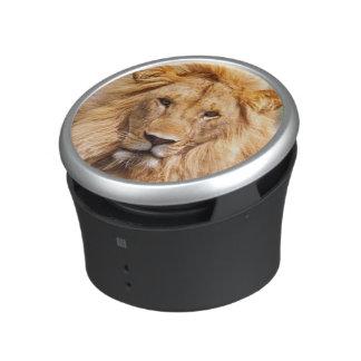 Pair of African Lions, Panthera leo, Tanzania Bluetooth Speaker