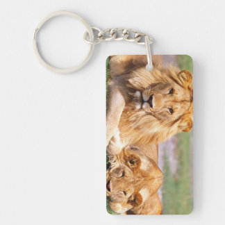 Pair of African Lions, Panthera leo, Tanzania Double-Sided Rectangular Acrylic Key Ring