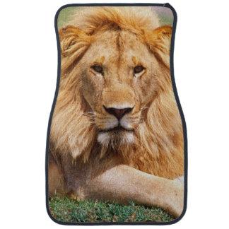 Pair of African Lions, Panthera leo, Tanzania Floor Mat