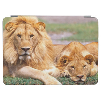Pair of African Lions, Panthera leo, Tanzania iPad Air Cover