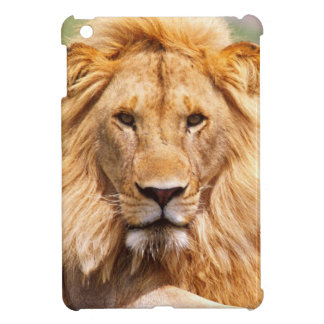 Pair of African Lions, Panthera leo, Tanzania iPad Mini Cover