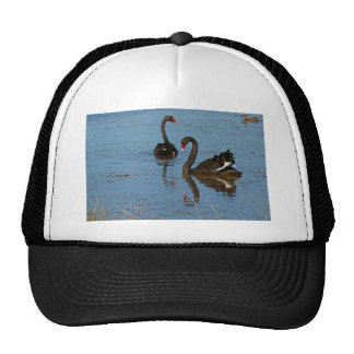 Pair of Black Swans Trucker Hat