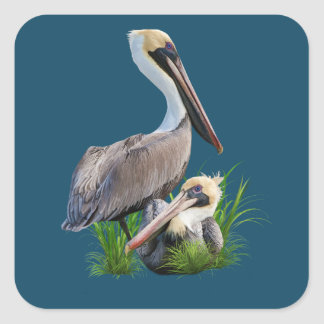 Pair of Brown Pelicans, Customizable Square Sticker