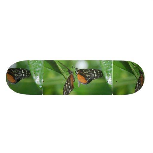 Pair of Butterflies Skate Board Decks
