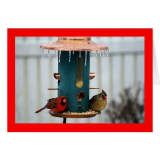Pair of Cardinals at Icy BirdFeeder Stationery Note Card