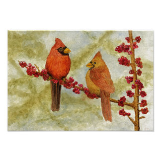 Pair of Cardinals Poster