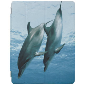 Pair of Dolphins iPad Cover