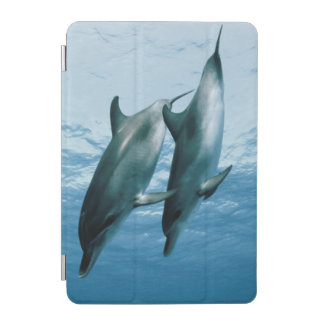 Pair of Dolphins iPad Mini Cover