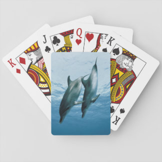 Pair of Dolphins Playing Cards