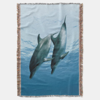 Pair of Dolphins Throw Blanket