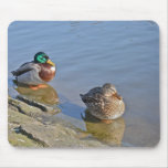 Pair of Ducks Swimming on the Lake Mouse Pad Mousepads