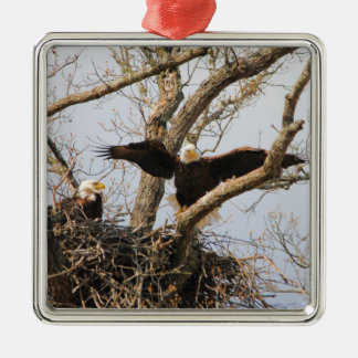 Pair of Eagles at Nest Silver-Colored Square Decoration