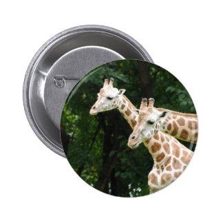 Pair of Giraffes  Button