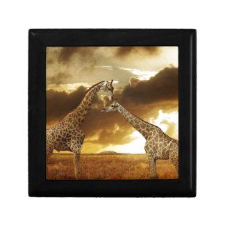 Pair of Giraffes Gift Box