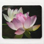 Pair of Lotus Flowers II Mouse Pad