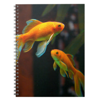 Pair of Lucky Goldfish Notebook