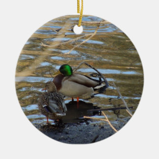 Pair of Mallard Ducks on Shore's Edge Ornament