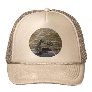 Pair of Mallard Ducks on Shore's Edge Trucker Hats