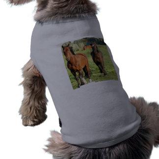 Pair of Morgans Pet Shirt