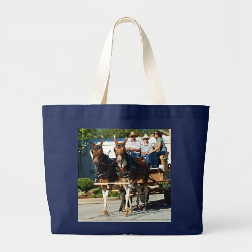 pair of mules in parade canvas bags