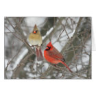 Pair Of Northern Cardinals Card