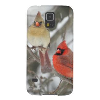 Pair Of Northern Cardinals Galaxy S5 Case