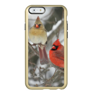 Pair Of Northern Cardinals Incipio Feather® Shine iPhone 6 Case