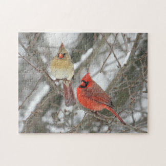 Pair Of Northern Cardinals Jigsaw Puzzle