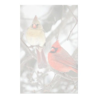 Pair Of Northern Cardinals Stationery