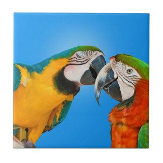 Pair of Parrots Kissing Tile