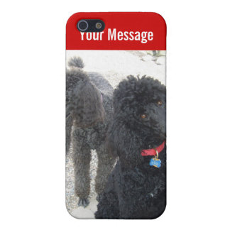 Pair of Poodles iPhone Case iPhone 5/5S Cases