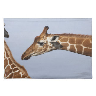 Pair of Reticulated Giraffes (Giraffa) Placemats