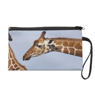 Pair of Reticulated Giraffes (Giraffa) Wristlet Purses