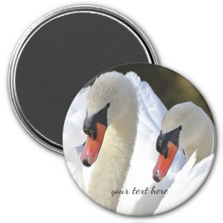 Pair of Swans Magnet