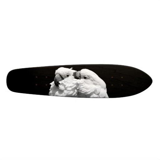 Pair of umbrella cockatoos skate board