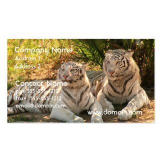 Pair of White Tigers Business Cards