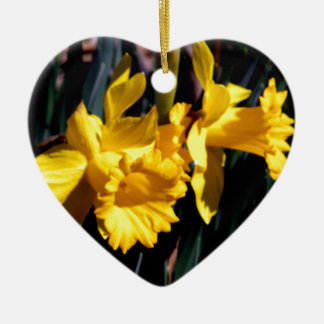 Pair of Yellow Daffodils Christmas Ornament