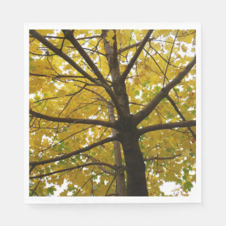 Pair of Yellow Maple Trees Autumn Nature Paper Napkins