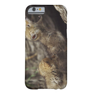 Pair Of Young Coyote Pups Howling Barely There iPhone 6 Case