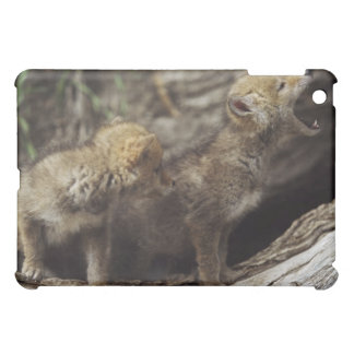 Pair Of Young Coyote Pups Howling iPad Mini Cases