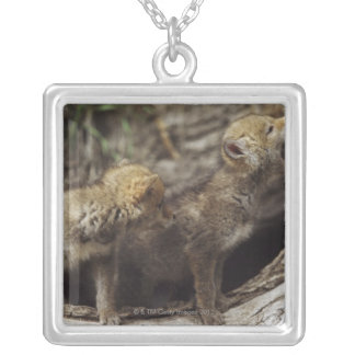 Pair Of Young Coyote Pups Howling Square Pendant Necklace