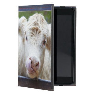 Pair of young white cows at feeding trailor iPad mini cover