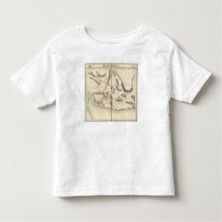 Pakistan, Asia 80 Toddler T-Shirt